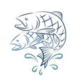 fish and water splashes vector image vector image