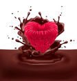 Raspberry heart with chocolate vector image