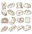 hand drawn bread vector image