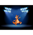 A kangaroo under the spotlights vector image