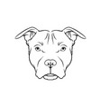 black and white sketch of bulldog dogs head face vector image
