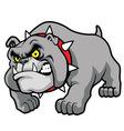 classic bulldog pose vector image