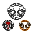No Pain No Gain vector image