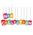 colorful hanging cardboard Tags - new vector image
