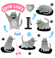 Set of funny gray cats vector image