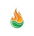 fire leaf waterdrop style logo image vector image