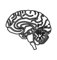 brain black icon vector image