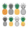 pineapple yellow gray icons set vector image