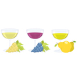 grape and fruit wines vector image vector image