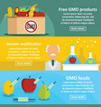 gmo products banner horizontal set flat style vector image
