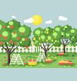 Cartoon harvesting ripe fruit vector image