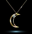 pendant with a large crescent vector image vector image