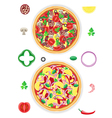 Pizza and components isolated on white background vector image