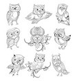 Cute Owls Outline Collection vector image