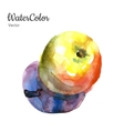 hand painting abstract watercolor apple vector image
