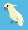 bird 2 vector image