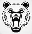 Angry Bear Head Tribal vector image vector image