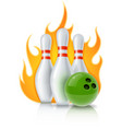 skittles and ball for bowling vector image vector image