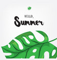 hello summer holiday greeting card with monstera vector image