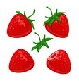 strawberry berries set vector image