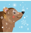 brown bear among vector image