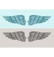 Hand drawn vintage angel wings Sketch vector image
