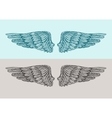 Hand drawn vintage angel wings Sketch vector image