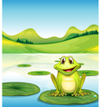 A frog above the waterlily in the pond vector image vector image