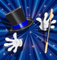 tool magician vector image vector image