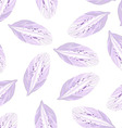 Seamless pattern with Purple flower petal vector image