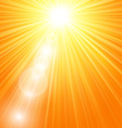 Sun burst with flare vector image