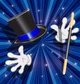tool magician vector image