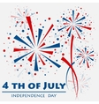 Firework independence vector image
