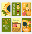 natural food concept cards vector image