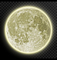 realistic detailed full moon isolated on vector image