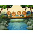 Four young lions at the river vector image vector image