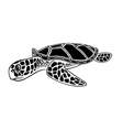 black and white isolated sea turtle vector image