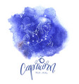 astrology sign capricorn vector image