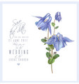 Blue flower card vector image