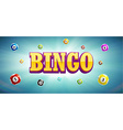 bingo lottery balls and place for text vector image