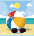 summer beach design in the seashore with vector image