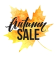 Autumn leaves Watercolor texture Fall leaf Sale vector image