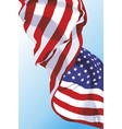 the national flag of the usa vector image
