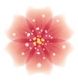 Soft pink flower vector image