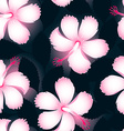 Pink and white tropical flowers on dark leaves vector image