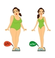 Fat and slim woman on weights scales vector image