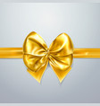 gold bow and ribbon silk satin or foil packing vector image