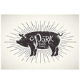 Graphic pig vector image