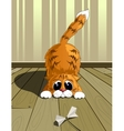 Playful cat eps10 vector image