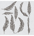 Collection of the monochrome feathers vector image